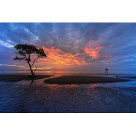 Tištěný obraz - Zázraky přírody