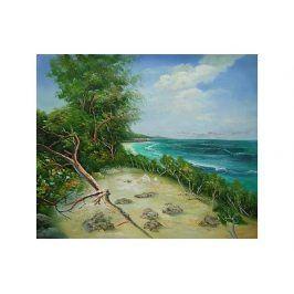 Obraz - Pláž po vichřici