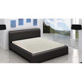 Čalouněná postel Edita 219