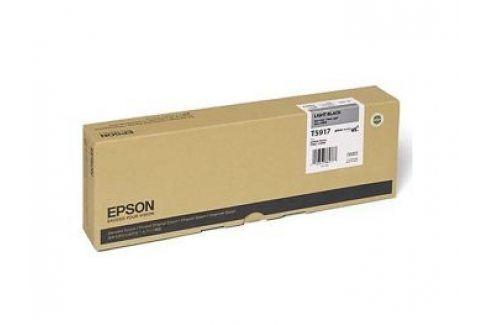 Epson T5917, Light Black, C13T591700 - originál T5919