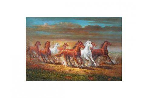 Obraz - Cválající koně Obrazy